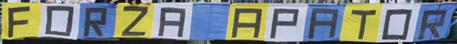 Replika flagi Forza Apator